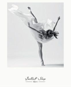 Gutschein Ballett Shop Bern